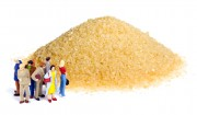 Kann man die Zuckerfabriken von Südzucker besichtigen?