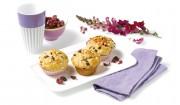 Mini-Panettone mit Cranberries und Mandeln