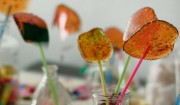 Bunte Lollipops